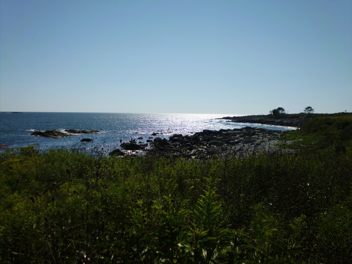 Tranquil Waters at Sachuest Point - RI