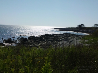 A Place of Solace - Sachuest Point - RI